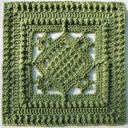 "Counterpoint 12"" Afghan Block"