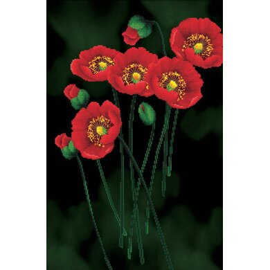 Needleart World Red Poppies on Black Aida No-Count Cross Stitch Kit