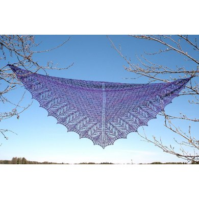 Night Bite Shawl