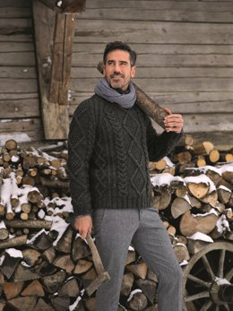 Men Cable Sweater with Roll Neck in Bergere de France Alaska - 71136-294 - Downloadable PDF