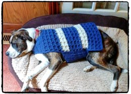 All Squared Away Dog Coat