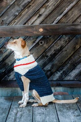 Ready to Roam Dog Sweater