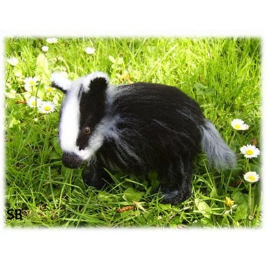 Bonnie the baby badger
