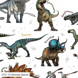 Craft Cotton Company Natural History Age of the Dinosaurs - Species