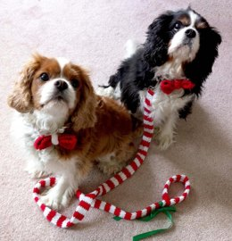 ROFL_Bow Tie & Leash Cover