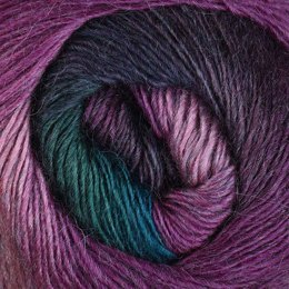 Plymouth Yarn Arya Ebruli