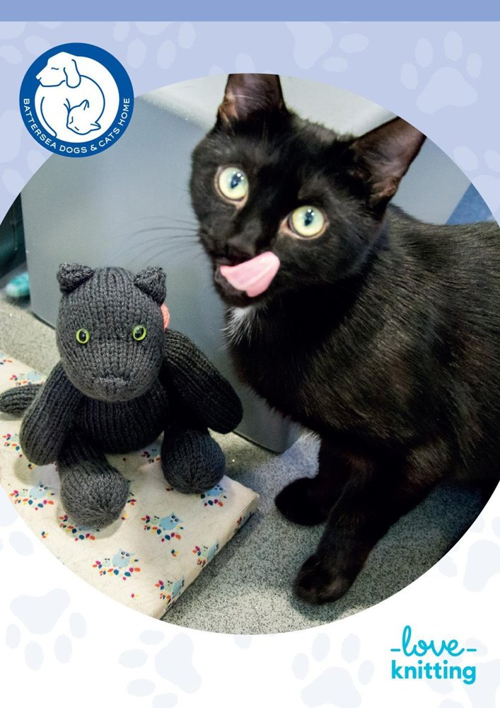 Knitting Kittens Battersea : Sushi the cat for battersea knitting pattern by