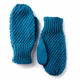 Textured Family Knit Mittens in Caron One Pound - Downloadable PDF