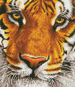 Diamond Dotz Bengal Magic Embroidery Kit