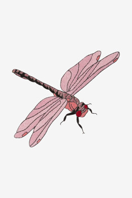 Dragonfly in DMC - PAT0478 -  Downloadable PDF