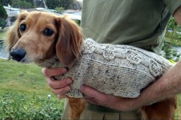Banjo Cable Mini Doxie Sweater