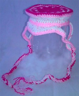 Precious in Pink - Dog Hat