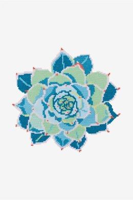 Turquoise Echeveria Succulent in DMC - PAT0563 - Downloadable PDF