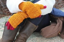 Ginger Beer Mitts