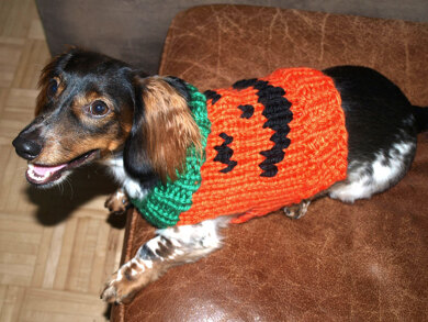 Jack-O-Lantern Dog Sweater in Lion Brand Hometown USA - L32211