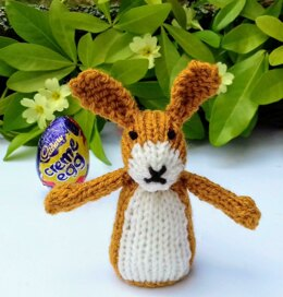 Brown Hare - Easter Egg Cover