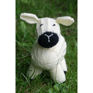 Lucy Lamb - Sheep Softie