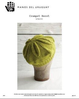 Crumpet Beret Hat in Manos del Uruguay Silk Blend