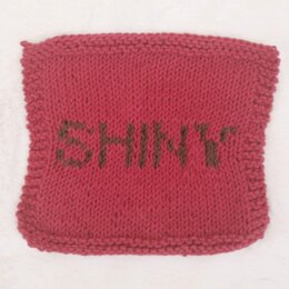 Shiny Dishcloth