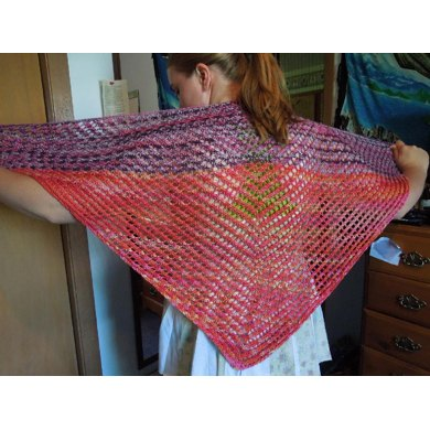 Blackberries in the Raspberry Patch--A Summer Shawl