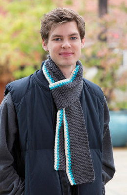 Reversible Color Pop Scarf in Red Heart Soft - LW4999 - Downloadable PDF