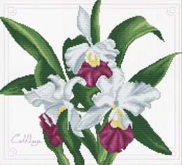 Needleart World Bouquet of Orchids No-Count Cross Stitch Kit