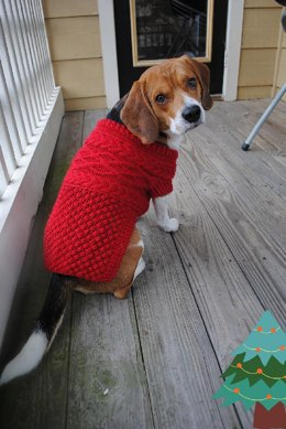 Canine Christmas Sweater