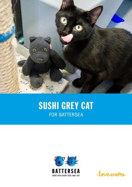Sushi the Cat for Battersea
