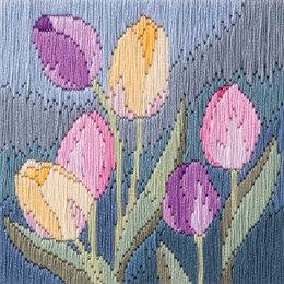 Derwentwater Designs Tulips Long Stitch Kit