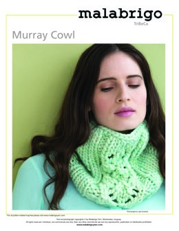 Murray Cowl in Malabrigo Rasta - Downloadable PDF
