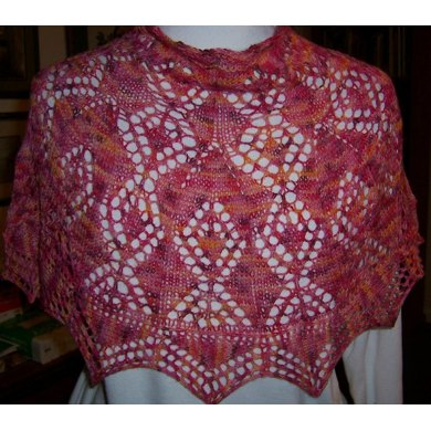 Red Sky at Night poncho