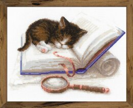 Riolis Kitten on a Book Cross Stitch Kit