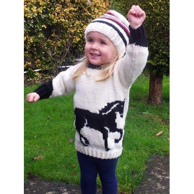 Horse Jumper and Hat