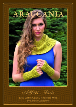 Ladies Lacy Cables Cowl and Fingerless Mitts in Ar