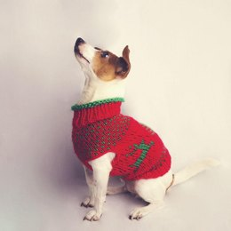 The Juno Christmas Jumper