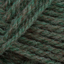 Wendy Aran with Wool 400g