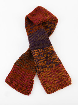Color Blend Scarf in Lion Brand Vanna's Choice - L20399