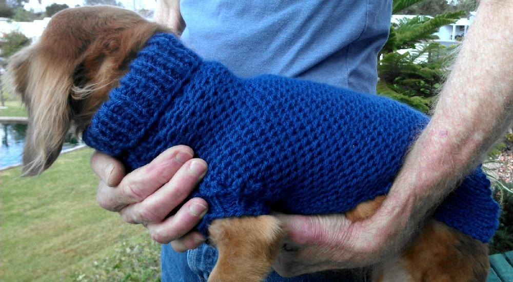 Ripple Stitch Miniature Dachshund Sweater Knitting pattern by Lena\'s ...