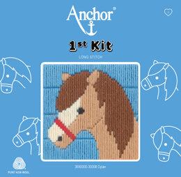 Anchor 1st Kit - Dylan
