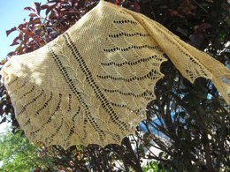Hatchling Dragon Shawl