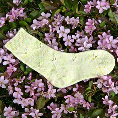 Cabbage Butterfly Socks