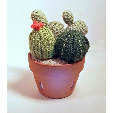 Knitted Cactus Garden