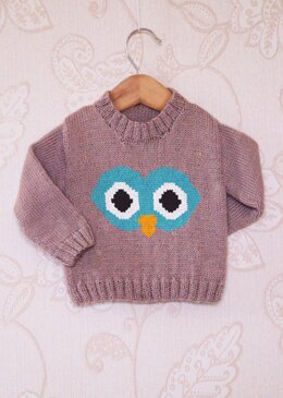 Intarsia - Owl Face Chart - Childrens Sweater
