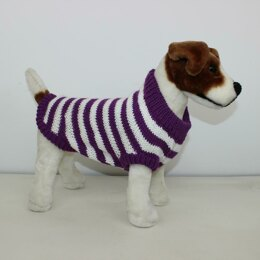 Aran Stripe Dog Coat