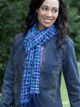 Bluesy Scarf in Caron Simply Soft and Simply Soft Paints - Downloadable PDF