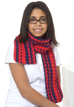 Be Proud Scarf in Red Heart Soft Solids - LW2604