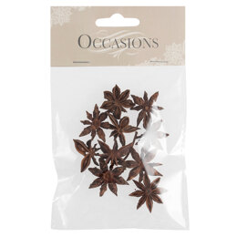 Groves Dried Star Anise: 10 Pieces