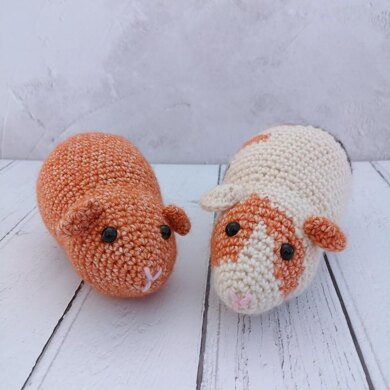 Gerald and Ginger Guinea Pigs