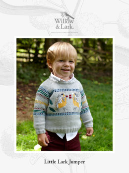 Little Lark Jumper in Willow & Lark Nest - Downloadable PDF