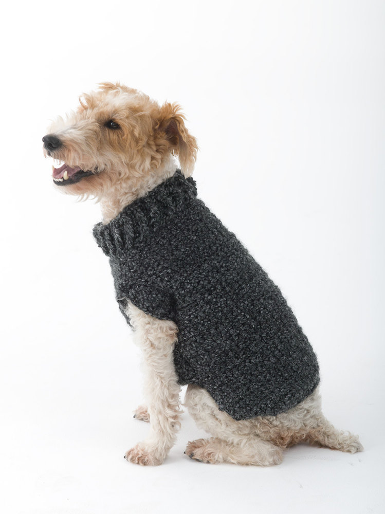 Free Easy Knitting Patterns For Medium Dog Jumpers : Poet Dog Sweater in Lion Brand Homespun - L32350 Crochet Patterns LoveCro...